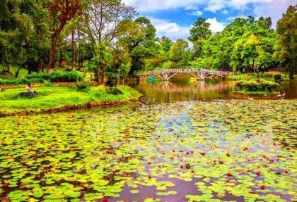 Wards Lake Shillong