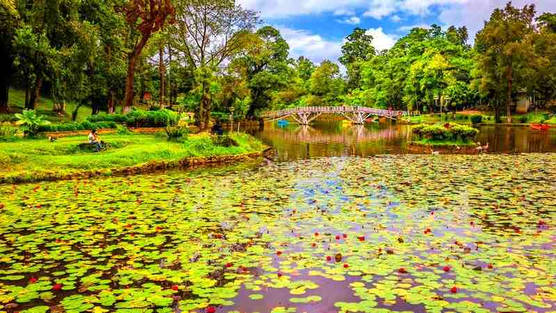Shillong Sightseeing Full Day Tour